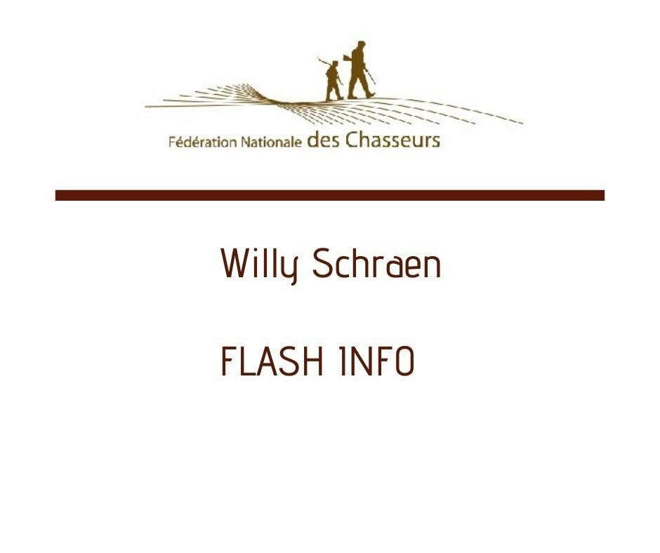 FLASH INFO - Willy Schraen en date du 19 mars 2020